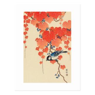 赤い蔦に鳥, 古邨 Vogel auf rotem Efeu, Koson, Ukiyo-e Postkarte