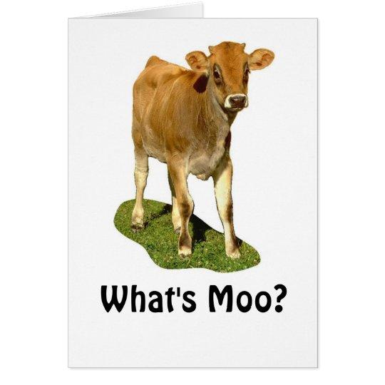 1607513, was ist MOO? Karte