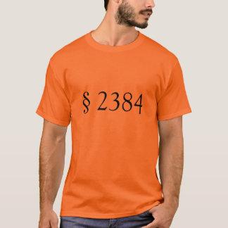 18 USC § 2384 - aufrührerische Verschwörung T-Shirt