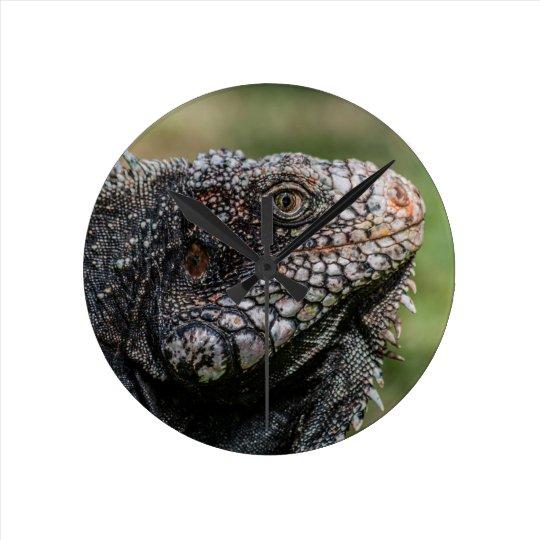 1920px-Iguanidae_head_from_Venezuela Runde Wanduhr