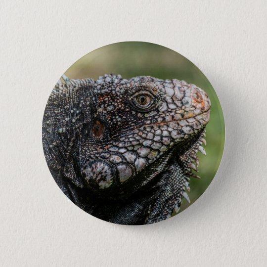 1920px-Iguanidae_head_from_Venezuela Runder Button 5,7 Cm