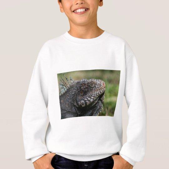 1920px-Iguanidae_head_from_Venezuela Sweatshirt