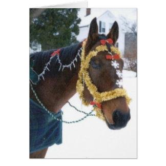 2005 OMRH Weihnachtskarten-Foto-dritter Karte
