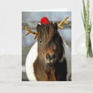 2005 OMRH Weihnachtskarten-Foto-erster Weihnachtskarte