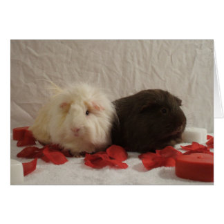 2 Meerschweinchen-Valentinsgrüße Karte