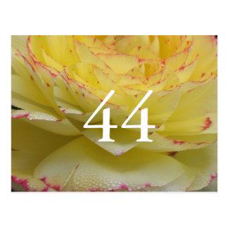 44. Geburtstag Postkarte