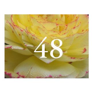 48. Geburtstag Postkarte