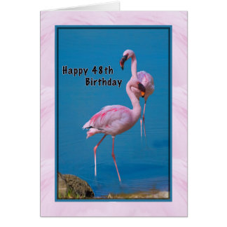 48. Geburtstags-Karte mit rosa Flamingo Karte