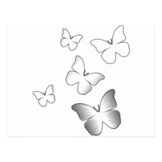 5 weiße Schmetterlinge Postkarte