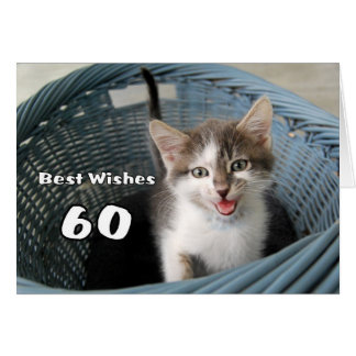 60. Geburtstags-verrücktes Kätzchen Grußkarte