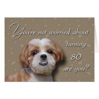 80. Geburtstags-Hund Grußkarte