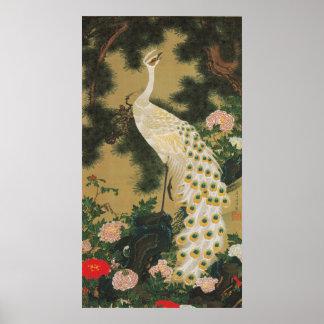 9. 老松孔雀図, pin de 若冲 vieux et paon, Jakuchu Posters