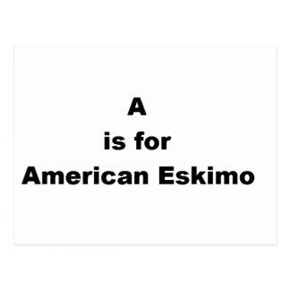 a ist für amerikanischen Eskimo Postkarte