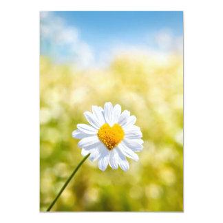 a shaped on flower a heart nice postcard carton d'invitation  12,7 cm x 17,78 cm