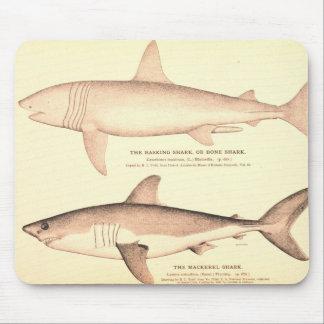 Aalender Haifisch und Makrelen-Haifisch Mauspads