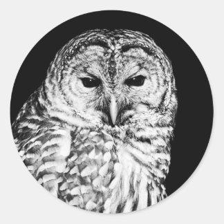Abgehaltene Eulen-Schwarzweiss-Porträt Runder Aufkleber