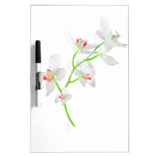 Abgeschiedene Orquideas Blüte Memoboard