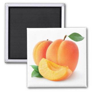 Abricots frais magnet carré