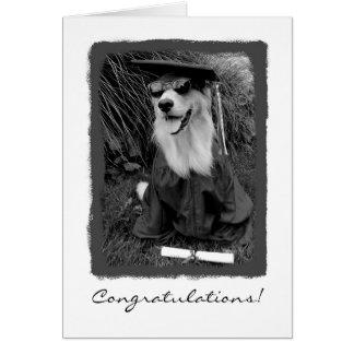 Abschluss-Glückwünsche Grußkarte