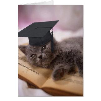 Abschluss, Katze mit Hut Grußkarte