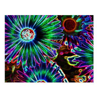 Abstrakte Kap-Gänseblümchenpostkarte Postkarte