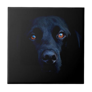 Abstrakter tierischer dunkler Hund Kleine Quadratische Fliese