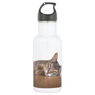 Abyssinisches Katzen-Nickerchen Trinkflasche