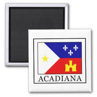 Acadiana Quadratischer Magnet
