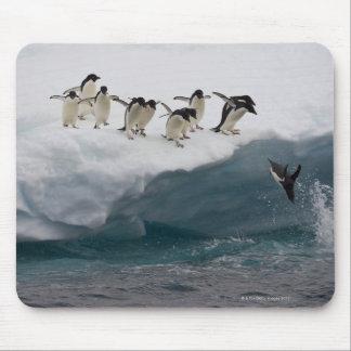 Adelie-Pinguine, die in Meer Paulette tauchen Mauspads