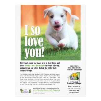 Adoptions-Plakat - Little- Rocktier-Dorf Flyerbedruckung