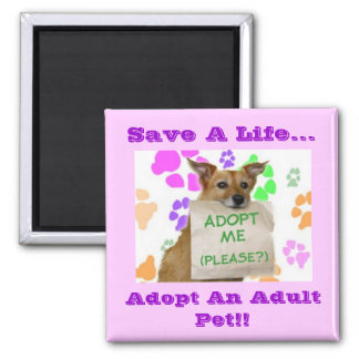Adoptme sauvent une vie… adoptent un animal fami aimants