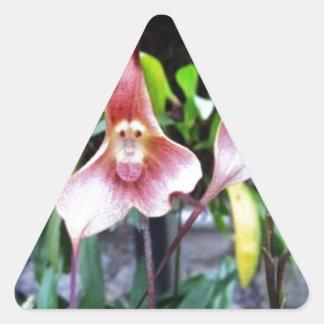 AFFE Blume: Natur-Wunder-Wunder Dreieckiger Aufkleber