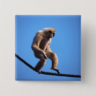 Affe, der auf Seil geht Quadratischer Button 5,1 Cm