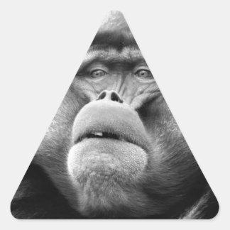 Affe Dreieckiger Aufkleber