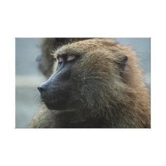 Affe Leinwanddruck