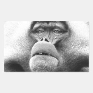 Affe Rechteckiger Aufkleber