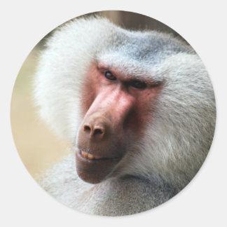Affen-Sprichwort grüß dich Runder Aufkleber