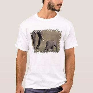 Afrika, Kenia, Amboseli Nationalpark. Afrikanisch T-Shirt