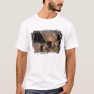 Afrika, Kenia, Masai Mara. Gemeine Hippopotamuses T-Shirt