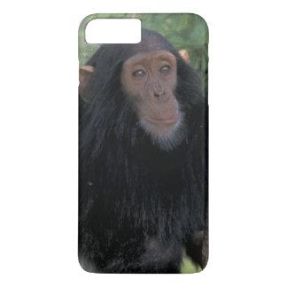 Afrika, Ostafrika, Tanzania, Gombe NP Säugling iPhone 8 Plus/7 Plus Hülle
