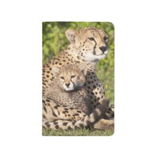 Afrika. Tansania. Gepardmutter und Junge 2 Taschennotizbuch