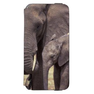 Afrika, Tansania, Tarangire Nationalpark. 2 Incipio Watson™ iPhone 6 Geldbörsen Hülle
