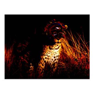 """""""Afrikanische Königin der Nacht"""" Produkte Postkarten"""