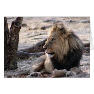 Afrikanische Löweanmerkungskarte Karte