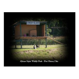 Afrikanische Safari-Tier-Parklemur-Postkarte Postkarte