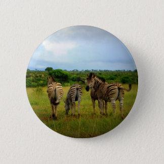 Afrikanische Zebras in einer natürlichen Runder Button 5,7 Cm