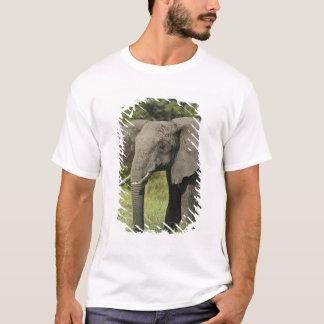 Afrikanischer Elefant, Masai Mara, Kenia. T-Shirt