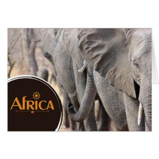 Afrikanischer Elefant notecard Karte