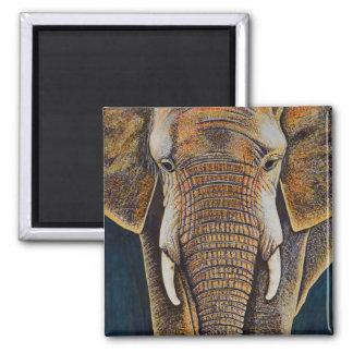 Afrikanischer Elefant Quadratischer Magnet