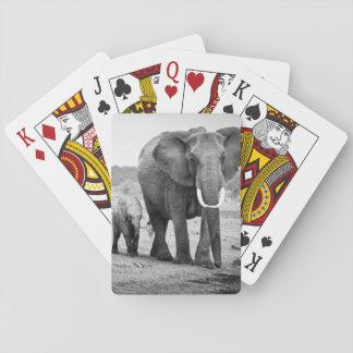 Afrikanischer Elefant u. Kälber | Kenia, Afrika Spielkarten
